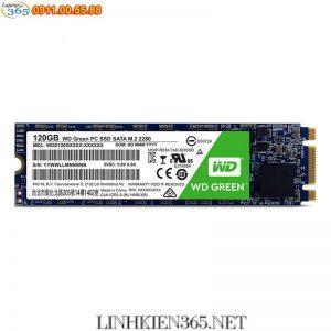 O cung ssd WD 120GB M.2